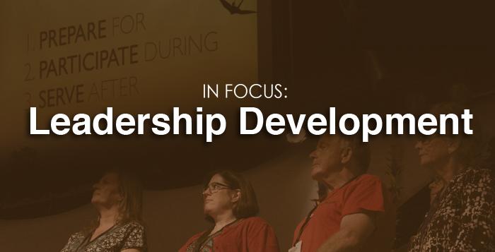 Dissertation leadership development
